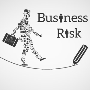 Business risk Prezi template
