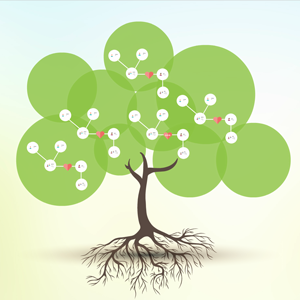 family tree Prezi template Preziland