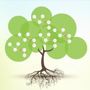family-tree-Prezi-template-Preziland